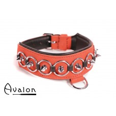 Avalon - WORSHIP - Collar med spisse nagler, ringer og D-ring  - Rød og sort