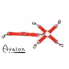 Avalon - SACRED - Rødt Hog-tie-sett med 5 deler