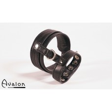 Avalon - cock & ball harness med spenner - Sort