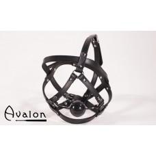 Avalon - Hodeharness i lær med gag